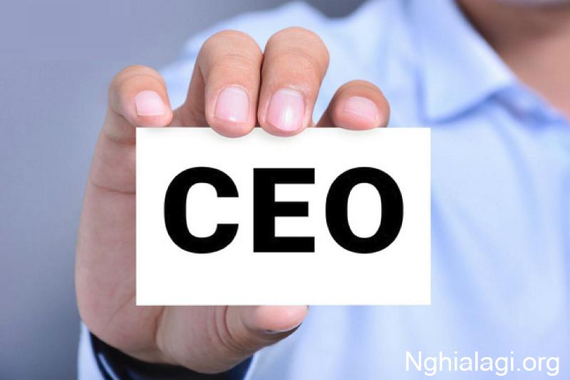 CEO là gì? CEO sẽ làm gì? Điều kiện để trở thành một CEO - Nghialagi.org
