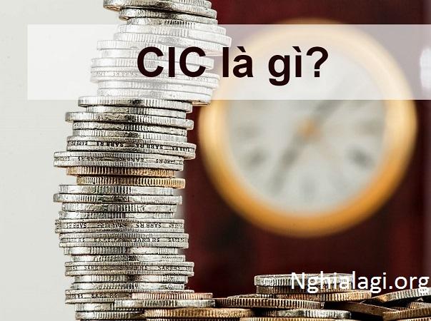 CIC là gì? Cách đăng ký và kiểm tra nợ xấu với CIC - Nghialagi.org