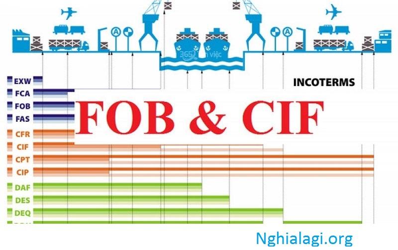 CIF là gì? Sự khác nhau giữa CIF và các điều kiện khác trong Incoterms - Nghialagi.org