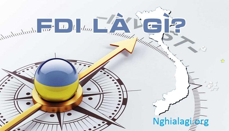 FDI là gì? Đặc điểm và vai trò của FDI với nền kinh tế - Nghialagi.org