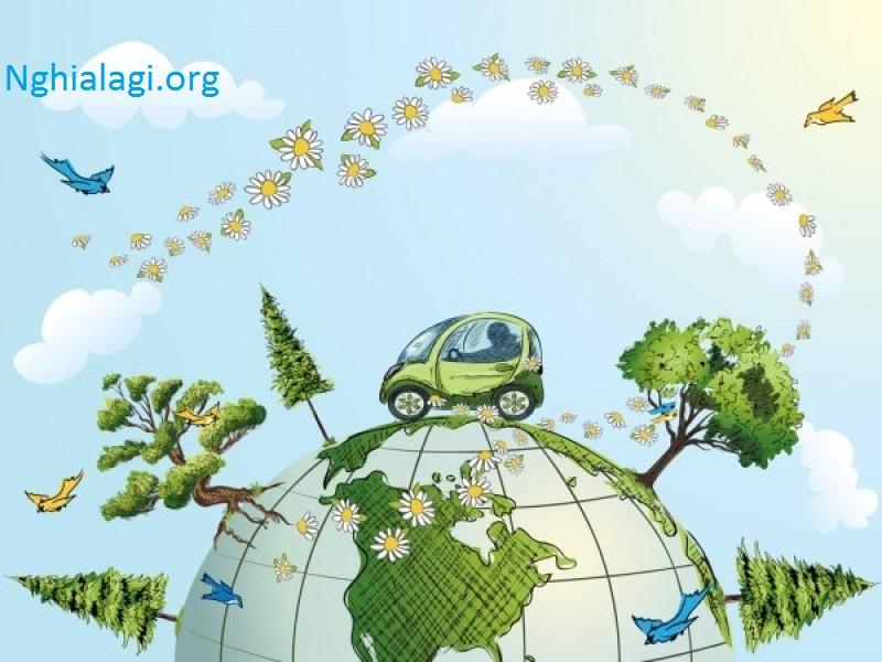 Môi trường là gì? Những điều cần biết về môi trường tự nhiên - Nghialagi.org
