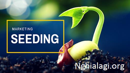 Seeding nghĩa là gì? Tác dụng của Seeding trong quảng cáo truyền thông - Nghialagi.org