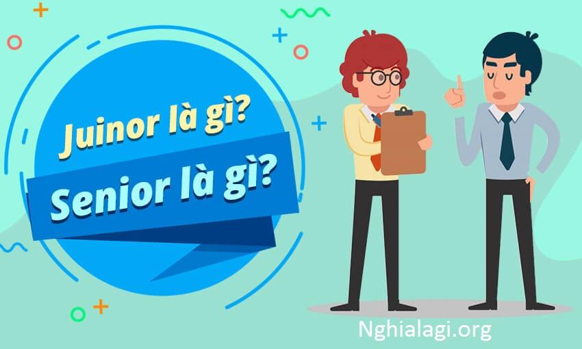 Senior là gì? Các cấp bậc tương tự như Senior - Nghialagi.org