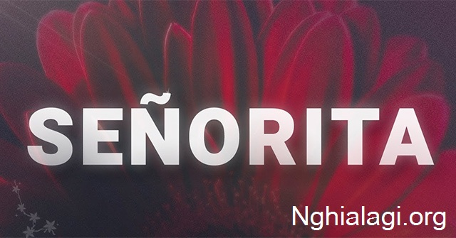 Senorita là gì? Ý nghĩa của bài hát Senorita - Nghialagi.org