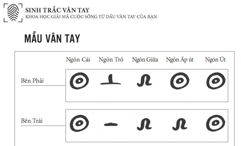 Ví dụ về xác định nhóm vân tay. - Nghialagi.org