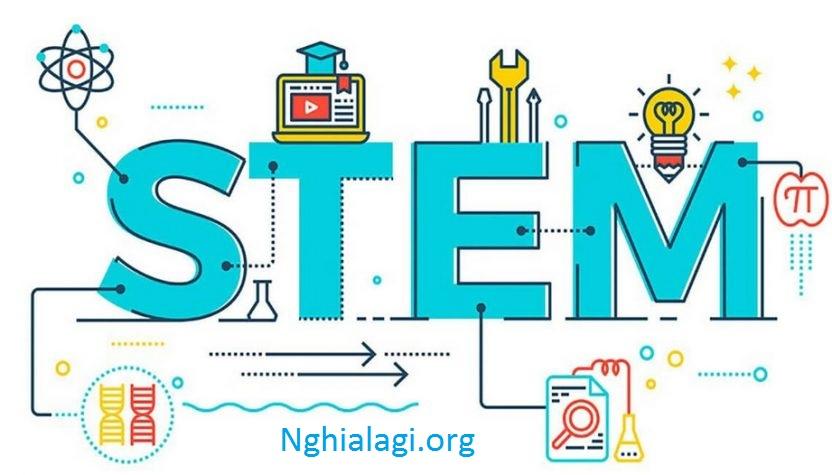 STEM là gì? Mô hình giáo dục STEM ở Việt Nam - Nghialagi.org