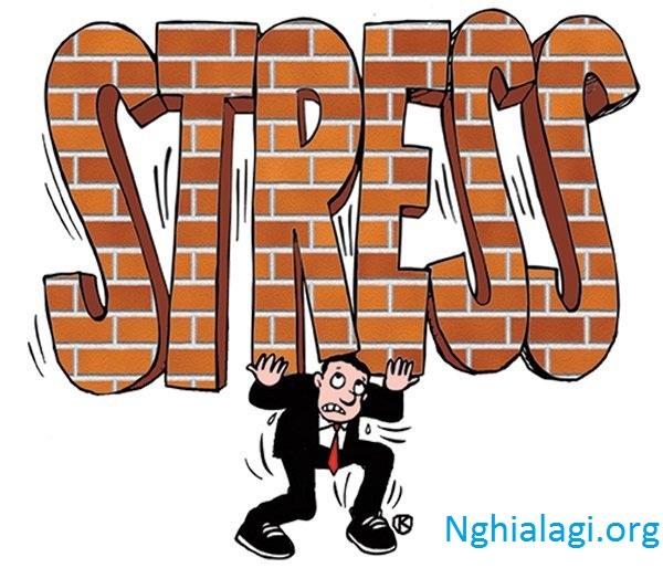 Stress là gì? Nguyên nhân và cách điều trị - Nghialagi.org