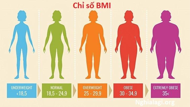 Cách đo và tính chỉ số BMI theo hướng dẫn của Viện Dinh dưỡng Quốc gia - Nghialagi.org