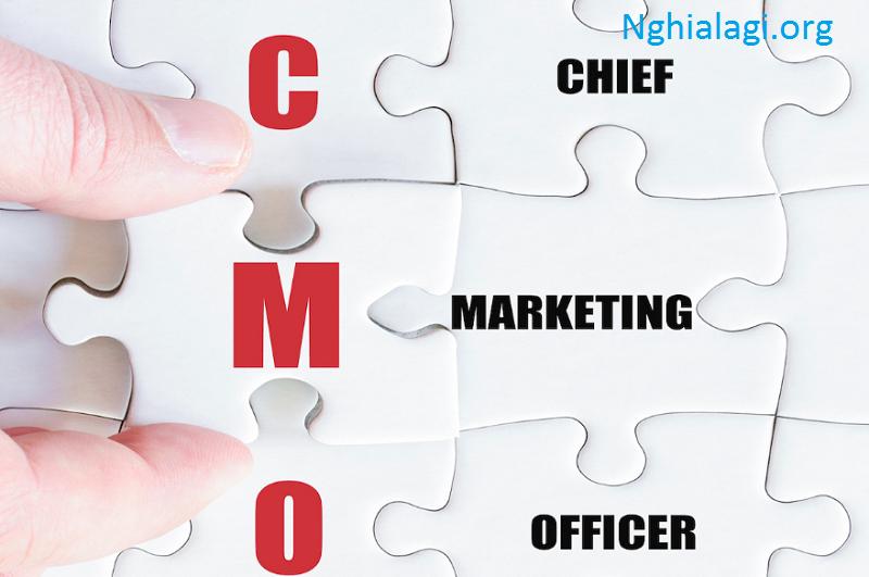 CMO là gì? Vai trò quan trọng CMO trong phát triển doanh - Nghialagi.org
