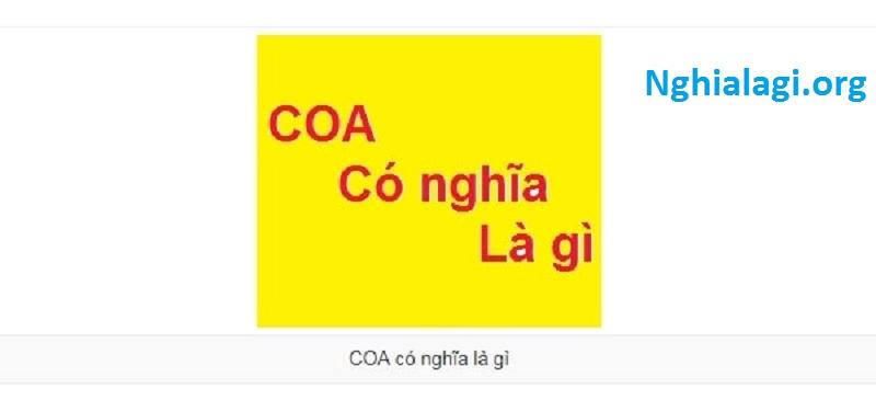 Giấy C.O.A là gì ? Có giá trị pháp lý không ? - Nghialagi.org