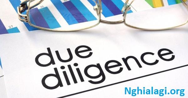 DUE DILIGENCE | Định nghĩa trong Từ điển tiếng Anh - Nghialagi.org