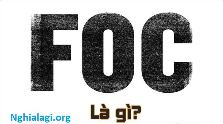 FOC là gì? Những dịch vụ FOC thường gặp trong khách sạn - Nghialagi.org