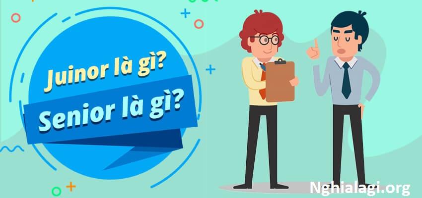 Junior developer và Senior là gì? Tố chất để thành công - Nghialagi.org