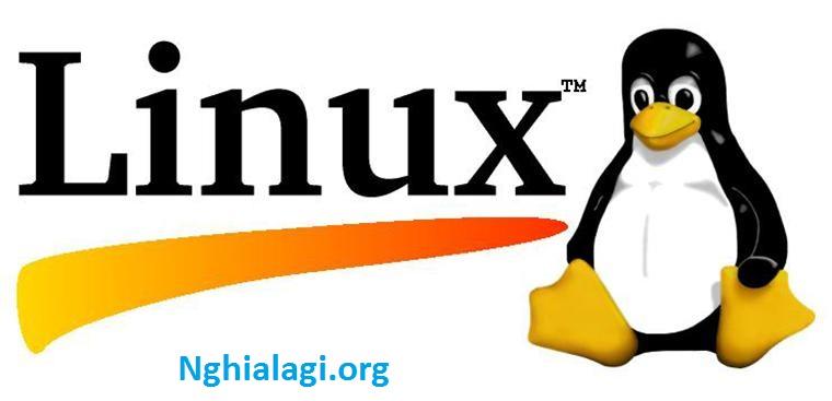 Linux là gì? Tổng hợp mọi kiến thức về hệ điều hành Linux - Nghialagi.org