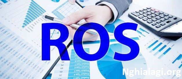 ROS là gì? Ý nghĩa của chỉ số ROS trong đầu tư chứng khoán - Nghialagi.org