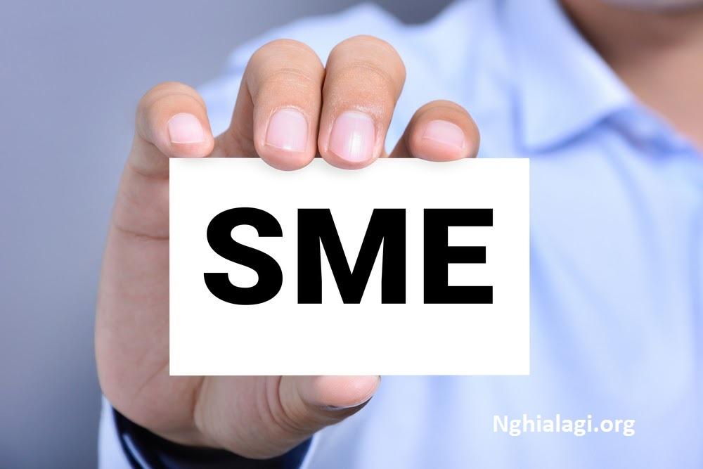 Doanh nghiệp SME là gì? Sự khác biệt giữa SME và Startup. - Nghialagi.org
