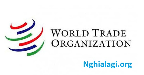 WTO là gì? Những thông tin cần biết về WTO - Nghialagi.org