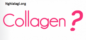 Collagen là gì? Collagen có tác dụng gì đối với cơ thể? - Nghialagi.org