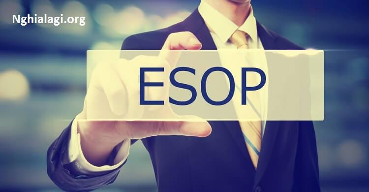 ESOP là gì? Quy định về phát hành cổ phiếu ESOP - Nghialagi.org