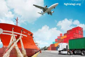 Forwarder là gì? Vai trò của forwarder trong xuất nhập khẩu! - Nghialagi.org