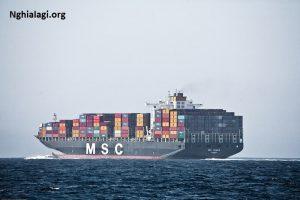 MSC là gì? Những ý nghĩa của MSC - Nghialagi.org
