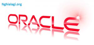 Oracle là gì? Cẩm nang kiến thức tổng hợp về Oracle cho bạn - Nghialagi.org