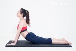 Pilates là gì ? Tại sao nên tập Pilates để giảm cân tốt hơn - Nghialagi.org
