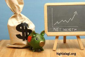 Giới thiệu về chỉ số giá trị tài sản ròng (NAV) - Nghialagi.org